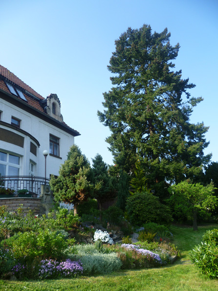 Pension Rau Gartenblick